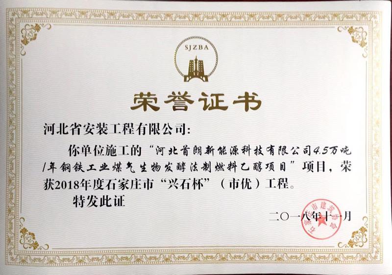 河北首朗新能源煤气生物发酵项目——2018年度市优